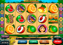 Big Kahuna Snakes And Ladders Online Slot