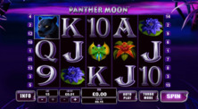 Panther Moon Online Slot
